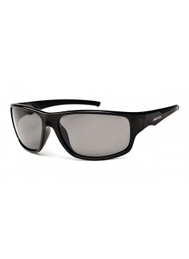Arctica Sunhawk sports glasses